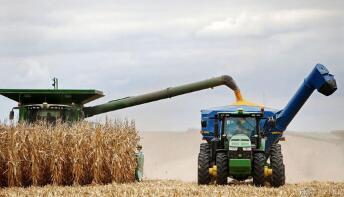 2月份巴西出口玉米82万吨