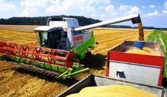 中国国内商品期货走势分化  农产品板块大跌