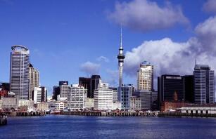 新西兰去年第四季度经济下降1%