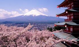 东京将于21日取消疫情紧急状态
