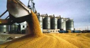 芝加哥期货交易所玉米、小麦和大豆期价22日涨跌不一