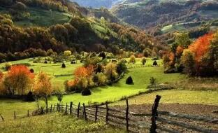 塞尔维亚农业部长尼迪莫维奇:塞农业出口增长50%