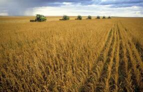 美国农业部(USDA)报告:2020/21年度全球棉花产量、期初和期末库存下调,消费量上调