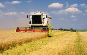 玉米期价4月13日大涨,带动小麦、大豆期价全线上涨