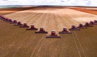 联合国粮农组织:全球粮价上涨至近十年高点