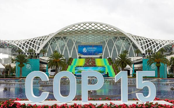 COP15开幕在即 大会会场准备就绪迎宾客