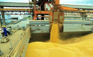 芝加哥期货交易所玉米、小麦和大豆期货18日全线上涨